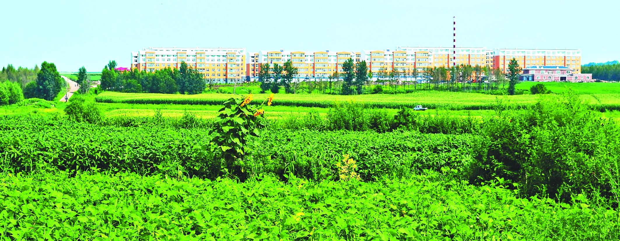 王克俭本报记者姚建平     拜泉县位于黑龙江省中西部,是全国