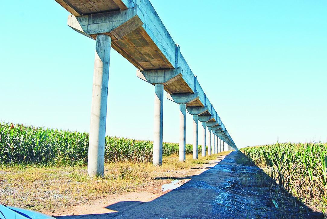 黑龙江农业结构调整成效显现